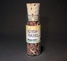 Witch Hazel *